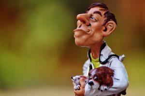 Urgence vétérinaire, retrouvez les contacts